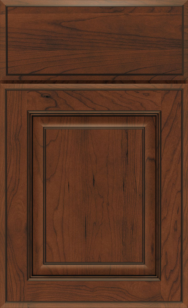 birkdale_cherry_raised_panel_cabinet_door_tundra_black_forest